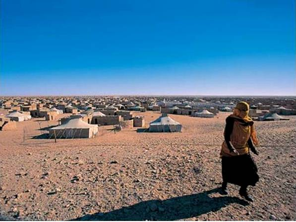 Polisario-run camps near Tindouf in Algeria, where Sahrawi refugees have been confined and denied rights their rights for more than three decades, reports the US Committee for Refugees and Immigrants (USCRI/Oct. 2009).