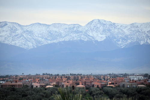Marrakech skyline and Atlas mountains