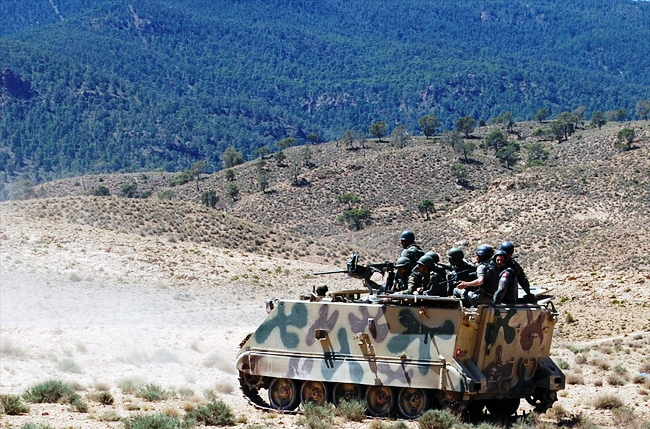 Tunisian soldiers patrol the Jebel Chaambi region on June 11th, 2013. Algeria and Tunisia are sharing intelligence to secure their border. [AFP/Abderrazek Khlifi]
