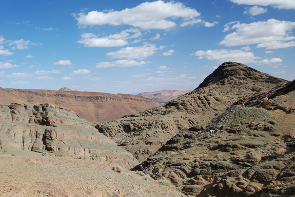 Ancient find: The animals skeleton had long since disintegrated, but it left a characteristic impression in the sediments of the Moroccan Anti-Atlas Mountains. Credit: Andrew Smith