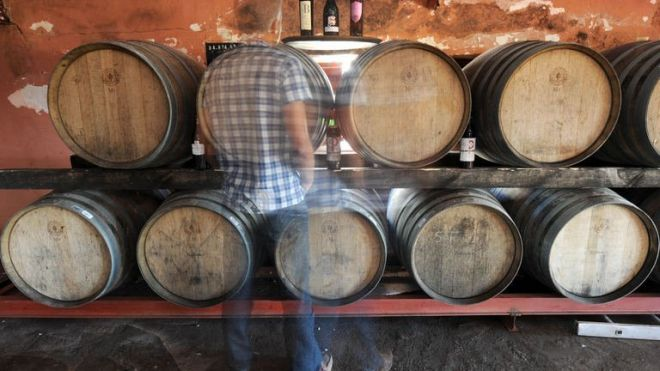 A man walks past wine barrels inside a cellar in the Moroccan town of Benslimane in the Casablanca region, June 12, 2013. Vines stretch to the horizon under the hot summer sun in a vineyard near Casablanca, one of the oldest in Morocco, where despite the pressures from a conservative Muslim society, wine production -- and consumption -- is flourishing. (AFP/File)